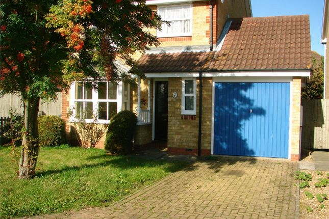 Thumbnail Detached house to rent in Wertheim Way, Huntingdon