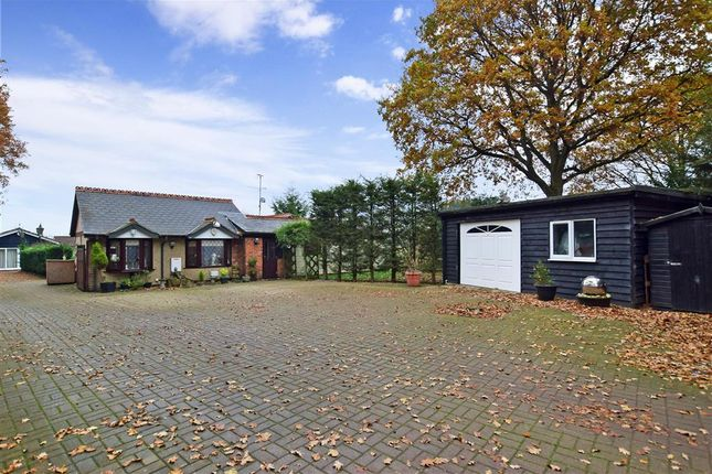 Thumbnail Detached bungalow for sale in Bennetts Avenue, Chelmsford, Essex
