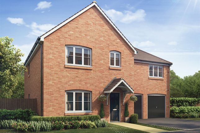 """Thumbnail Detached house for sale in """"The Compton """" at Hatfield Road, St Albans"""