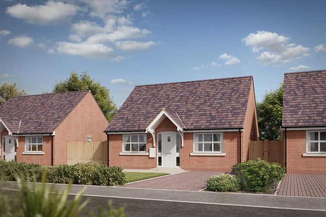 """Thumbnail Bungalow for sale in """"The Newland"""" at Spetchley, Worcester"""