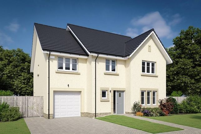 "Thumbnail Detached house for sale in ""The Darroch"" at Willow Park Drive, Penicuik"