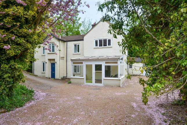 Thumbnail Detached house for sale in Thorpe Hamlet, Norwich