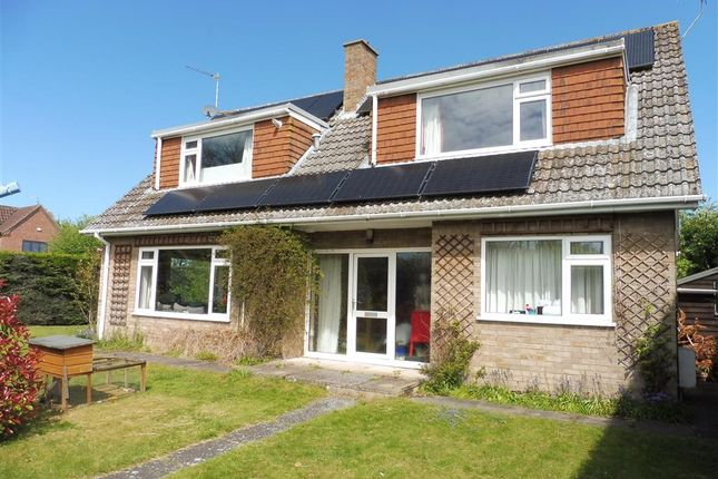 Thumbnail Detached house for sale in Westgate Green, Hevingham, Norwich