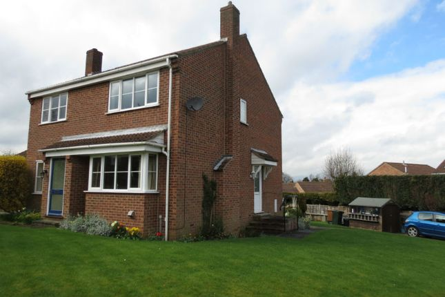 Thumbnail Semi-detached house to rent in Sycamore Close, Slingsby