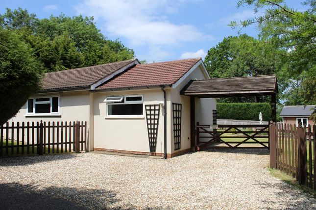 3 bed detached bungalow to rent in Brighton Road, Lower Kingswood, Tadworth KT20