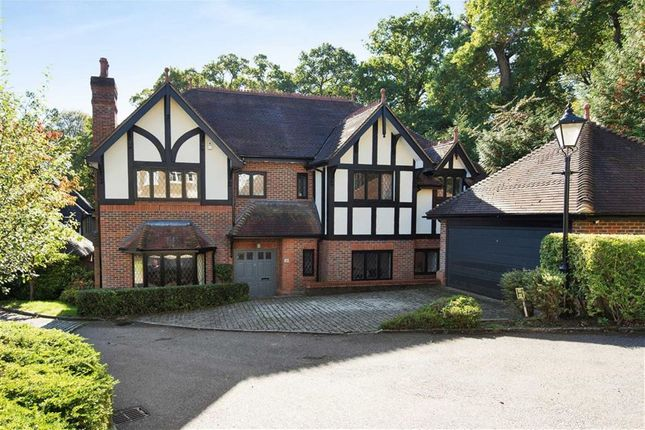 Thumbnail Detached house for sale in Pagitts Grove, Hadley Wood, Herts