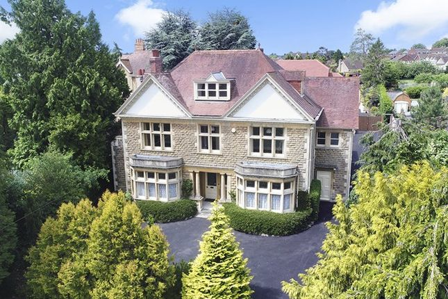 Thumbnail Detached house for sale in Mount Pleasant, Bath Road, Beckington, Frome