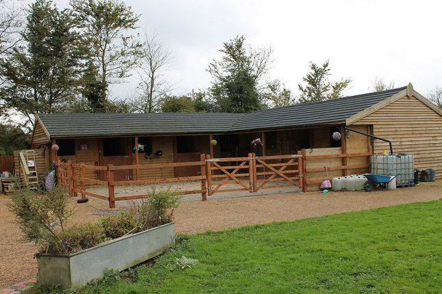 Thumbnail Equestrian property for sale in B4553 Cricklade Road, Cricklade