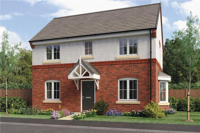 "Thumbnail Detached house for sale in ""Stanton"" at Oteley Road, Shrewsbury"