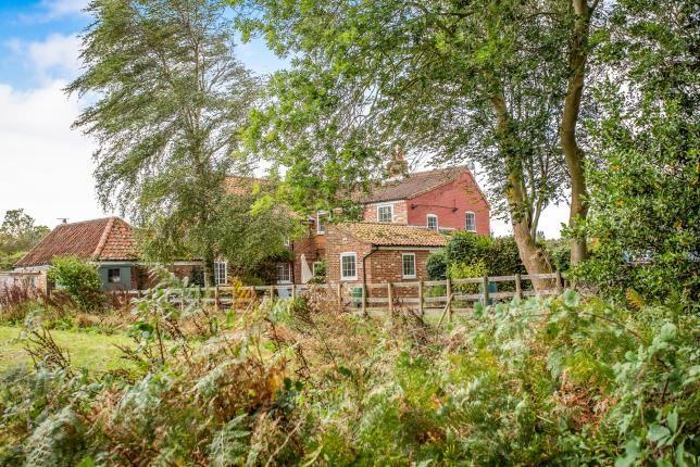 Thumbnail Semi-detached house for sale in Chapel Road, Guestwick, Dereham