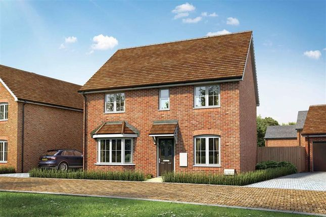 Thumbnail Detached house for sale in Fontwell Avenue, Eastergate, Chichester
