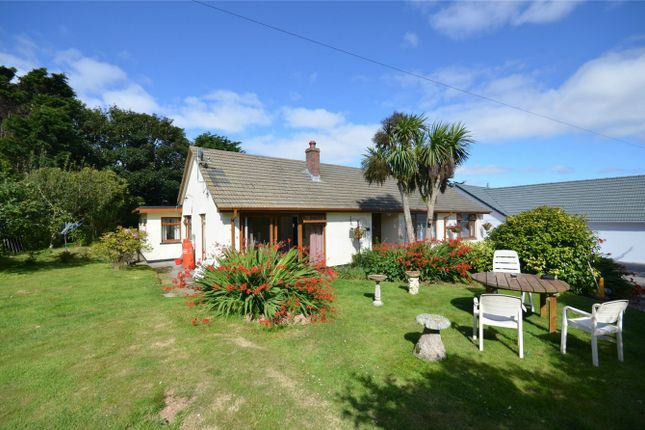 Thumbnail Detached bungalow for sale in West Kitty, St Agnes, Cornwall