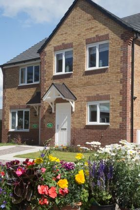 "3 bedroom semi-detached house for sale in ""Tyrone"" at Wheatriggs, Milfield, Wooler"