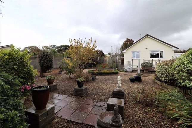 Thumbnail Detached bungalow for sale in Ash Close, Winscombe