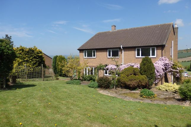 Thumbnail Detached house for sale in The Hawthorns, Coundon, Bishop Auckland