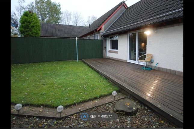 Thumbnail Bungalow to rent in Muirfield Place, Kilwinning