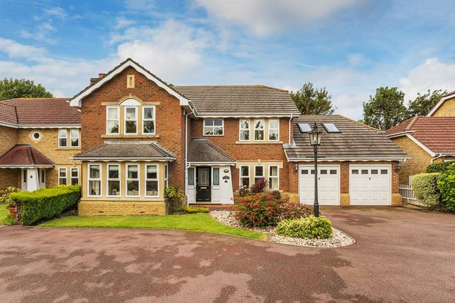 Thumbnail Detached house for sale in Sovereign Close, Purley