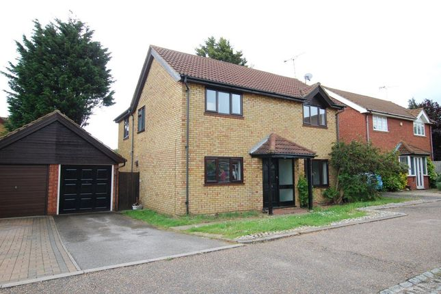 Thumbnail Property to rent in Holsworthy, Shoeburyness, Southend-On-Sea