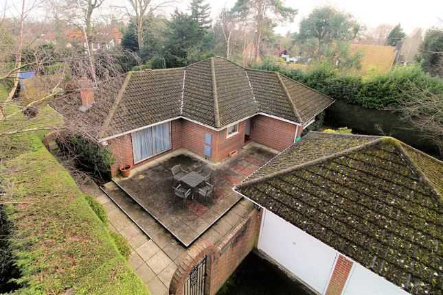 Thumbnail Detached bungalow for sale in Shaftesbury Road, Woking