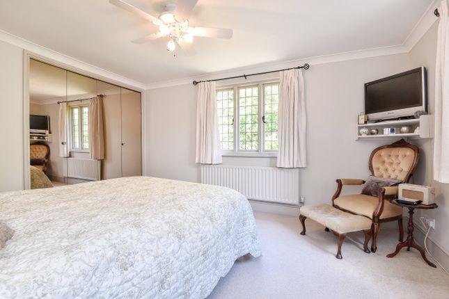 Room To Rent Wadhurst