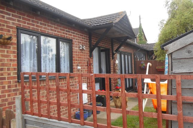 Thumbnail Detached bungalow to rent in Victoria Close, Grafty Green