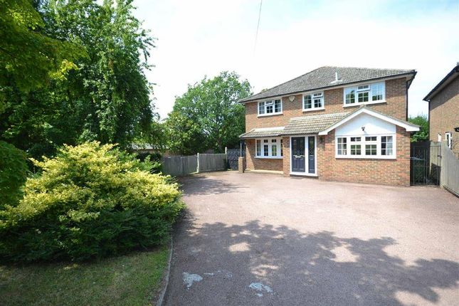 Thumbnail Detached house to rent in Longdown Lane North, Epsom
