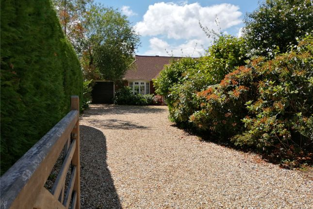 Thumbnail Bungalow for sale in Bepton, Midhurst, West Sussex