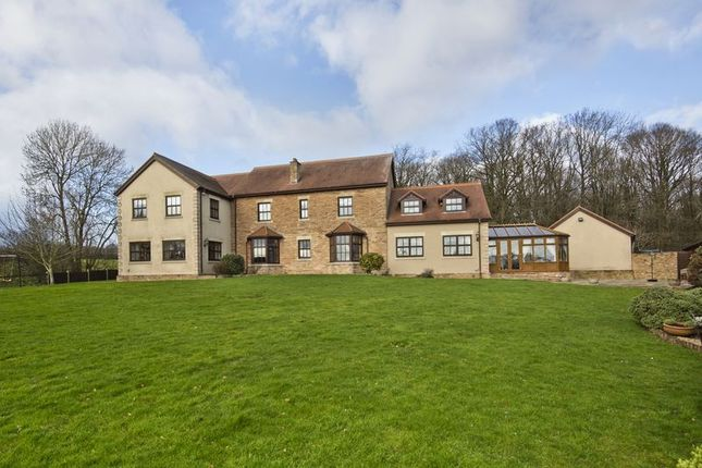 Thumbnail Detached house for sale in Gorsley, Ross-On-Wye