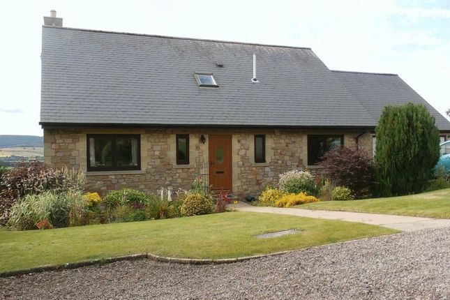 Thumbnail Detached house for sale in West Turn Pike, Glanton, Alnwick