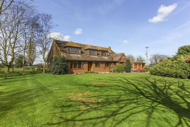Thumbnail Detached house to rent in Nash, Ash, Canterbury.