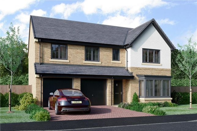 "Thumbnail Detached house for sale in ""The Buttermere"" at Coach Lane, Hazlerigg, Newcastle Upon Tyne"