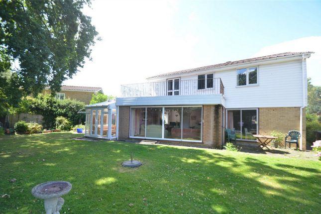 Thumbnail Detached house for sale in Farm Drive, Shirley, Croydon, Surrey