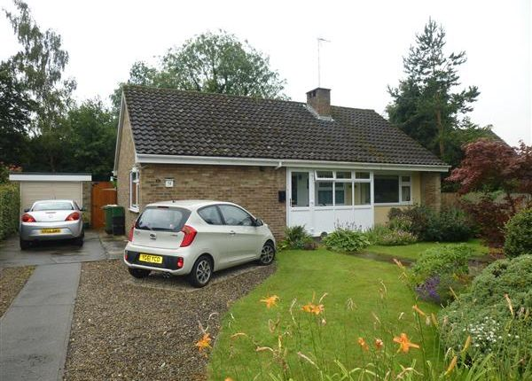 Thumbnail Detached bungalow for sale in The Coppice, Bishopthorpe, York