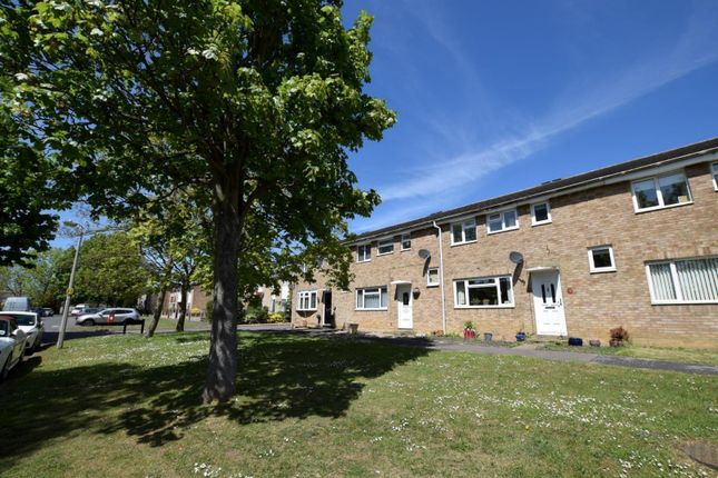 Thumbnail Terraced house to rent in Yew Close, Witham