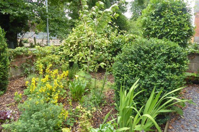 Front Garden of Princes Avenue, Grimsby DN31