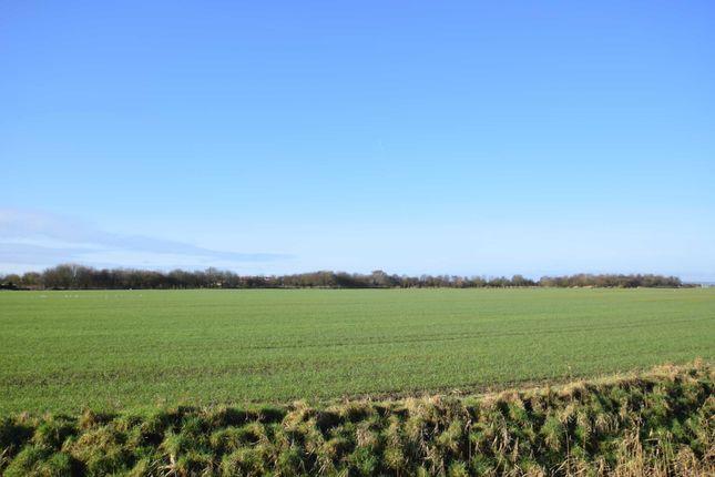 Open Views of Southwell Drive, Winthorpe PE25