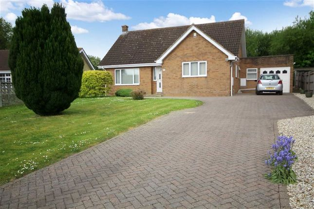 Thumbnail Detached bungalow for sale in Roman Crescent, Old Town, Swindon