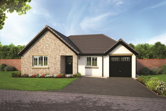 Thumbnail Detached bungalow for sale in Plot 4, The Yewdale, Blenkett View