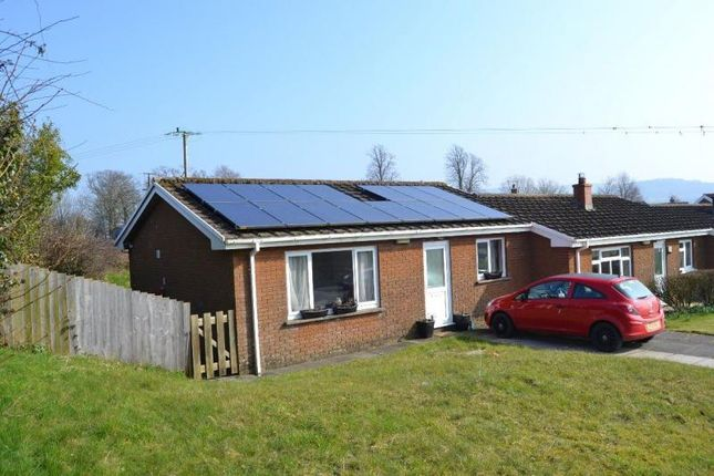 Thumbnail Bungalow to rent in Caledfwlch, Cwmifor, Llandeilo