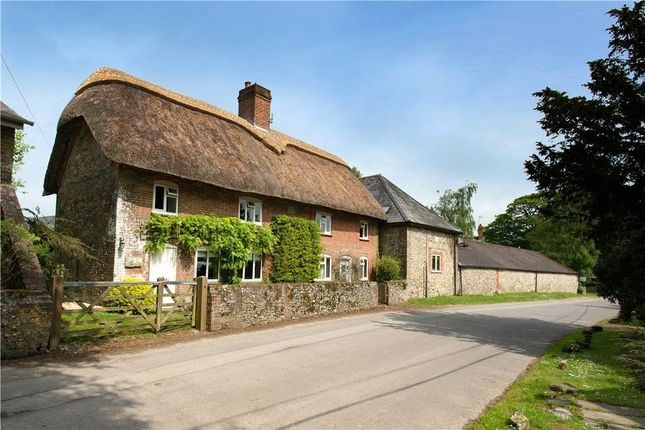 Thumbnail Detached house to rent in High Street, Ashmore, Salisbury