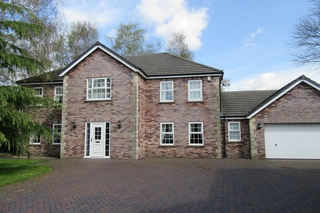 Thumbnail Detached house for sale in The Birches, Clydach, Swansea.