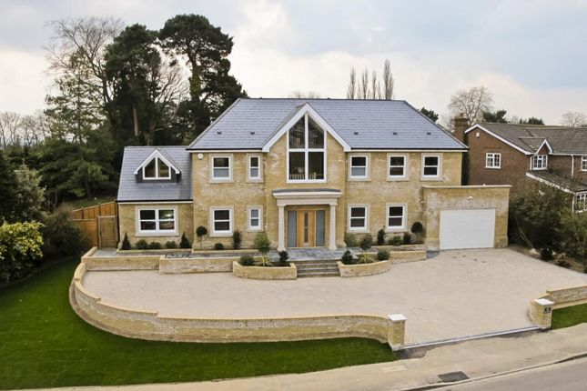 Thumbnail Detached house to rent in Lebanon Drive, Cobham