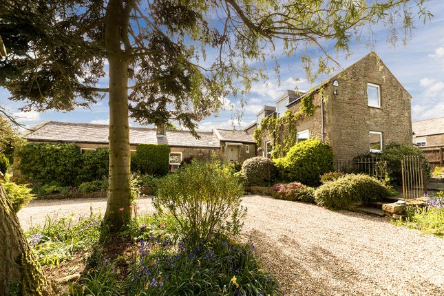 Thumbnail Detached house for sale in South Croft House, Great Whittington, Northumberland