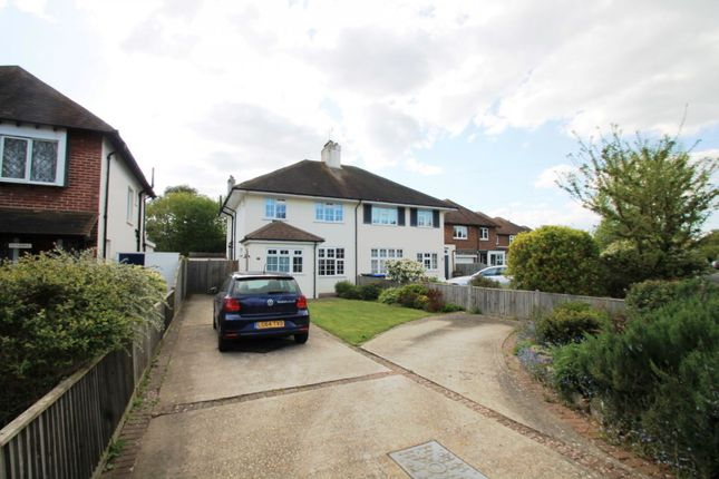 Thumbnail Semi-detached house to rent in Offington Drive, Broadwater, Worthing