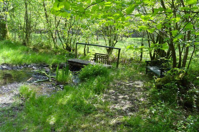 Private Wood Walks