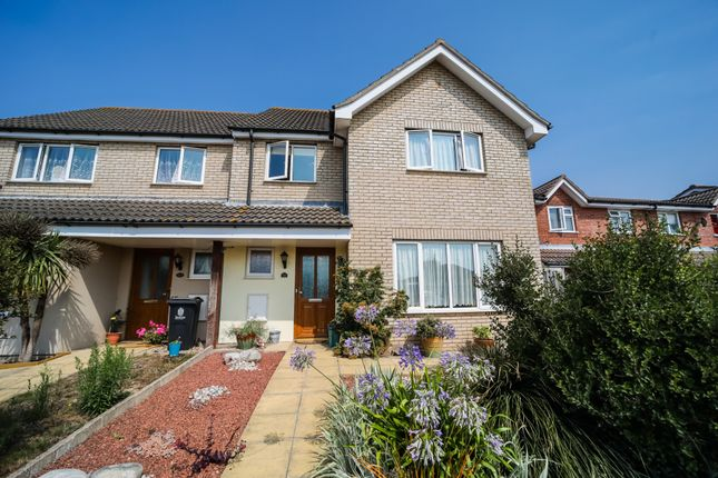 Thumbnail Semi-detached house for sale in Red Barn Road, Colchester, Essex