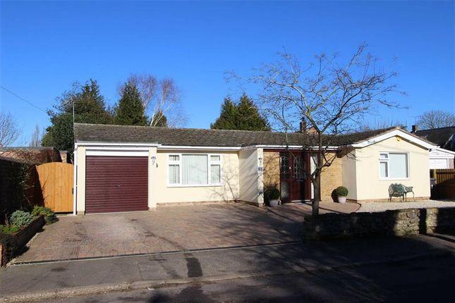 Thumbnail Detached bungalow for sale in Oak Lane, Crick, Northampton