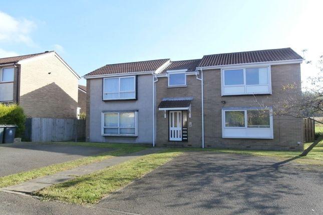 Studio to rent in Rosedale, Wallsend NE28