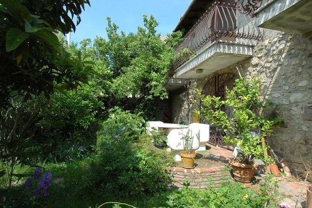 The Terrace And Small Garden