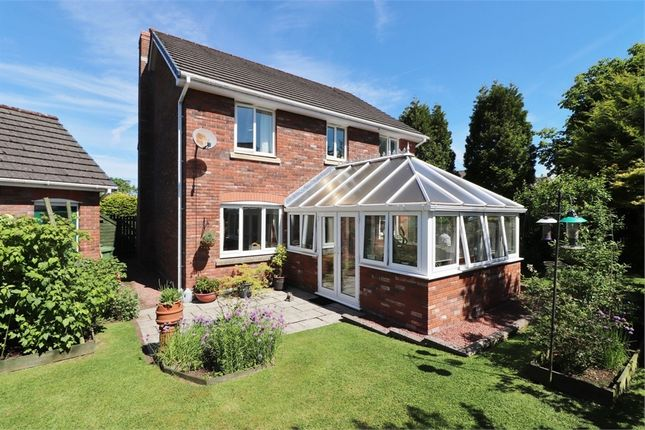 Thumbnail Detached house for sale in Irthing Park, Brampton, Cumbria